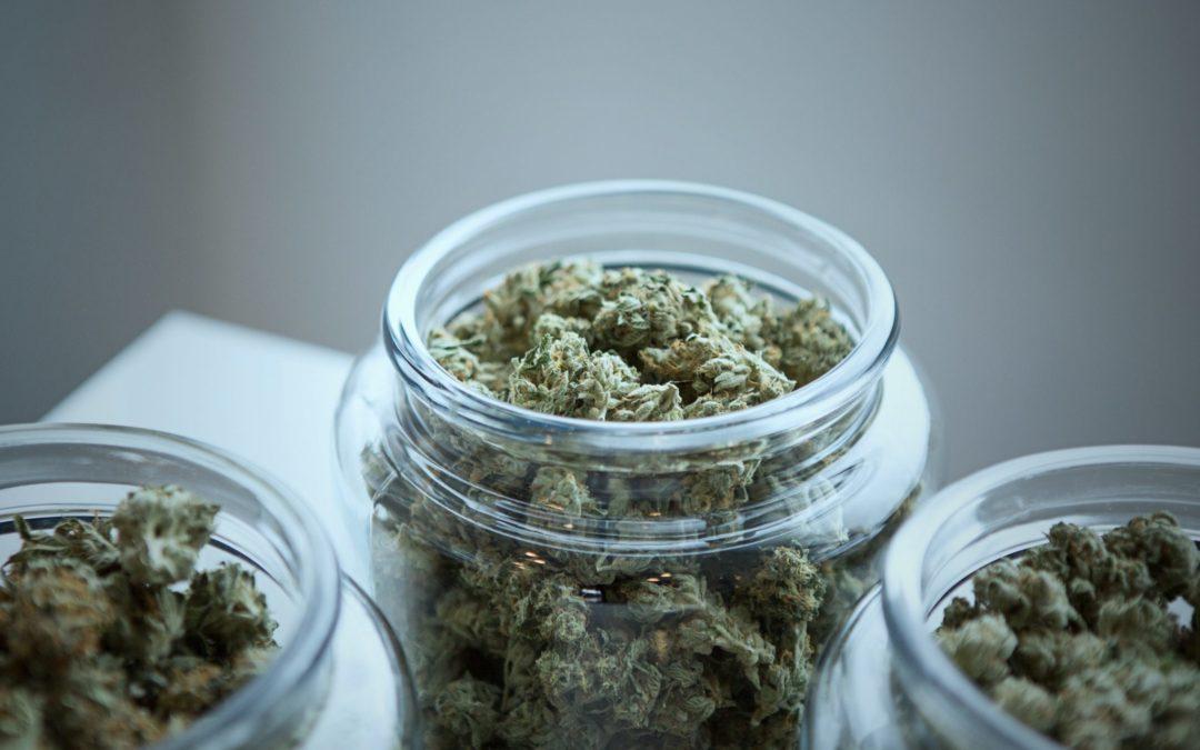 Gli effetti dell'ormai illecita cannabis light su ansia e depressione