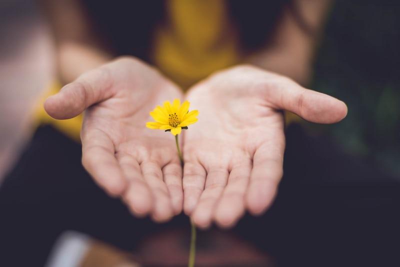 perdono come presa cura di se