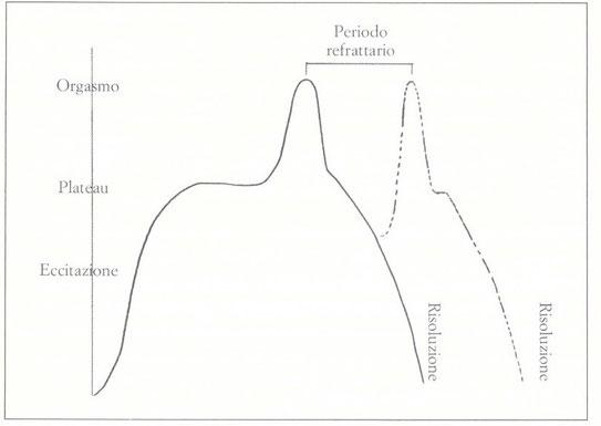 Il ciclo di risposta sessuale